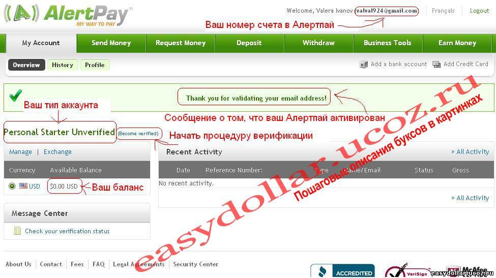 Главное меню AlertPay после регистрации