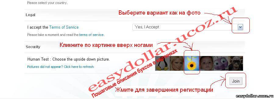 Регистрация в Clicksia
